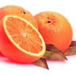 dieta vegetariana de salbit-portocala